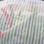 garden insect mesh (3)